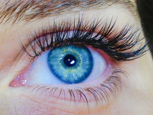 Eyelashes Des Moines Heidi L. Wilson